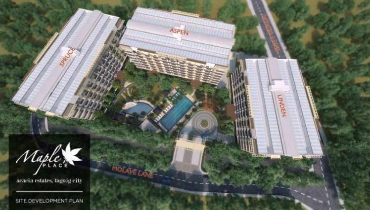 Maple Site Dev Plan