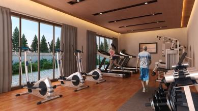 bsr-gym
